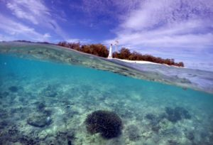 great-barrier-reef-aussyland